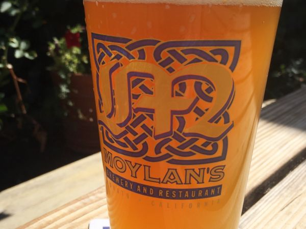 $5 Pints All Day!
